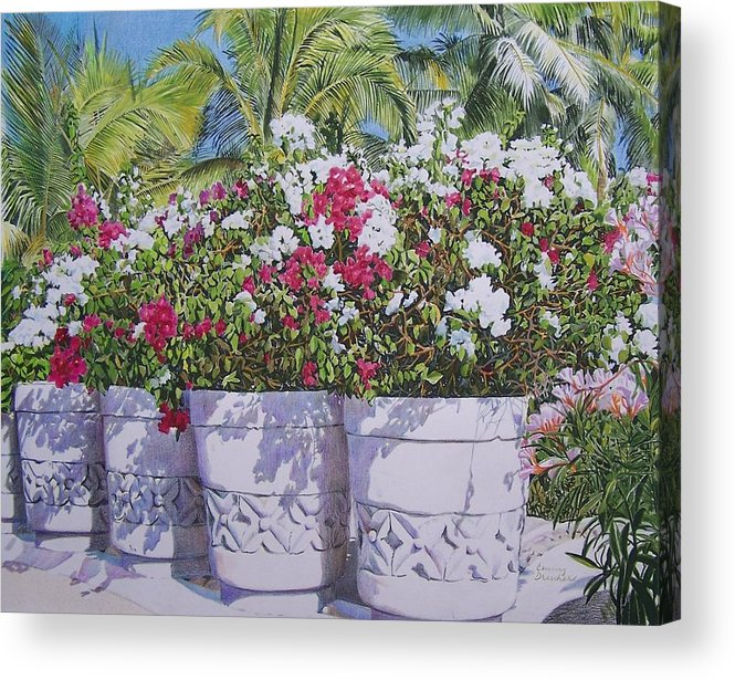 Rural Acrylic Print featuring the mixed media Bougainvillea by Constance Drescher