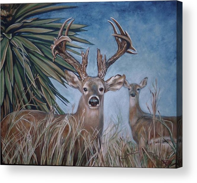 Deer Acrylic Print featuring the painting Berry Buck And Doe by Diann Baggett