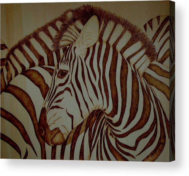 Pyrography; Woodburning; Sepia; Zebra; Stripes; Wild Life; Africa; Horse; Herd; Acrylic Print featuring the pyrography Blending In by Jo Schwartz