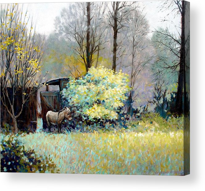 Donkey Acrylic Print featuring the painting Katrina by Kevin Lawrence Leveque