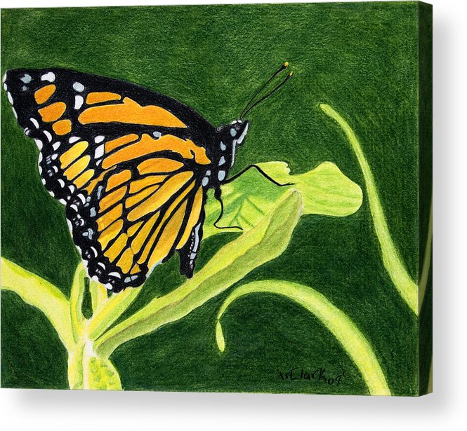Animals Acrylic Print featuring the painting Spring Monarch by Wade Clark