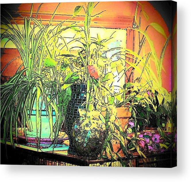 House Plants Acrylic Print featuring the mixed media Plants by YoMamaBird Rhonda
