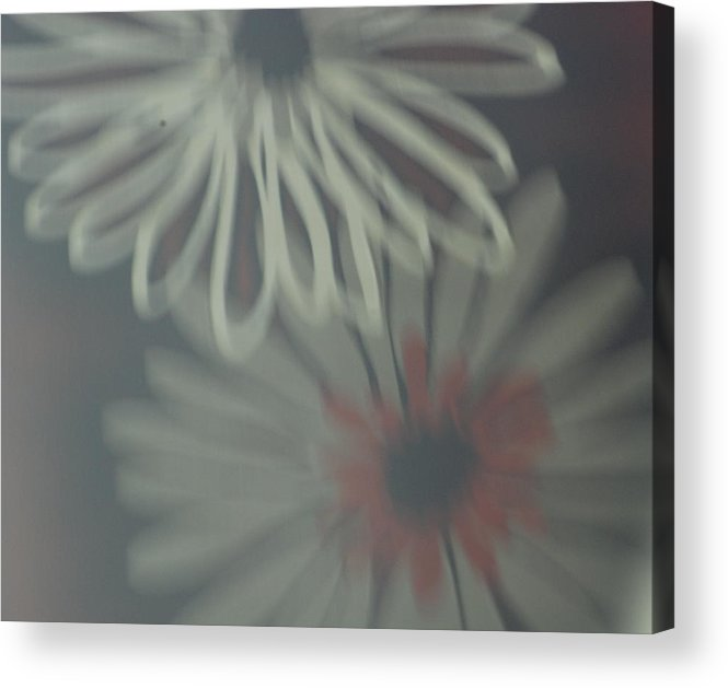 60's Photography Acrylic Print featuring the photograph 60's by Renee Holder