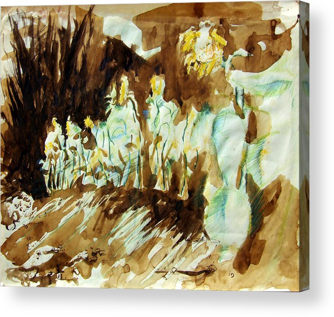 Sunflower Acrylic Print featuring the drawing Bistre Sunflowers by Diana Ludwig