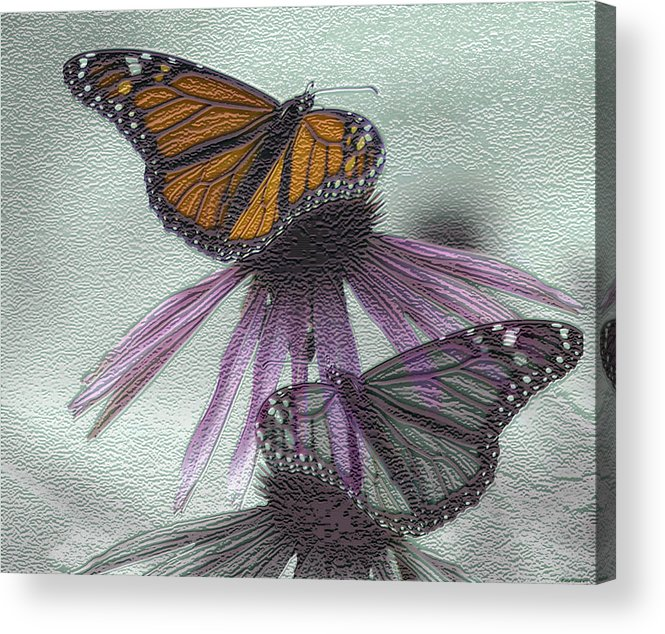 Butterflies Acrylic Print featuring the digital art Butterflies Under Glass by Evelyn Patrick