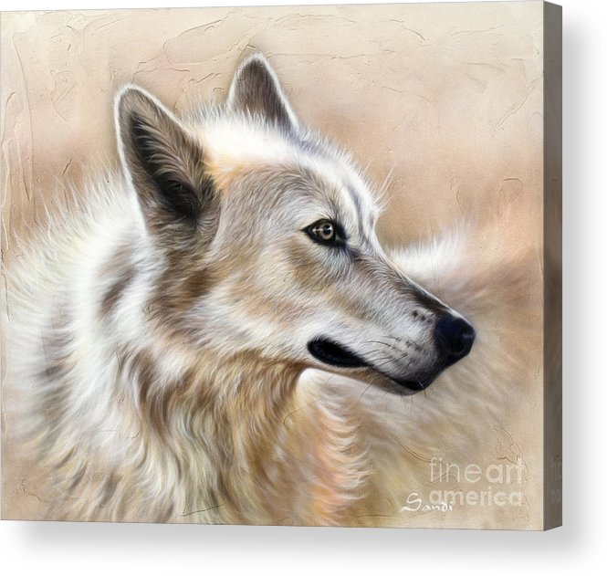 Acrylic Acrylic Print featuring the painting Cheyenne by Sandi Baker