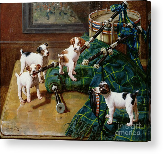 He Who Pays The Piper Calls The Tune By John Hayes (fl.1897-1902) Acrylic Print featuring the painting He Who Pays The Piper Calls The Tune by John Hayes