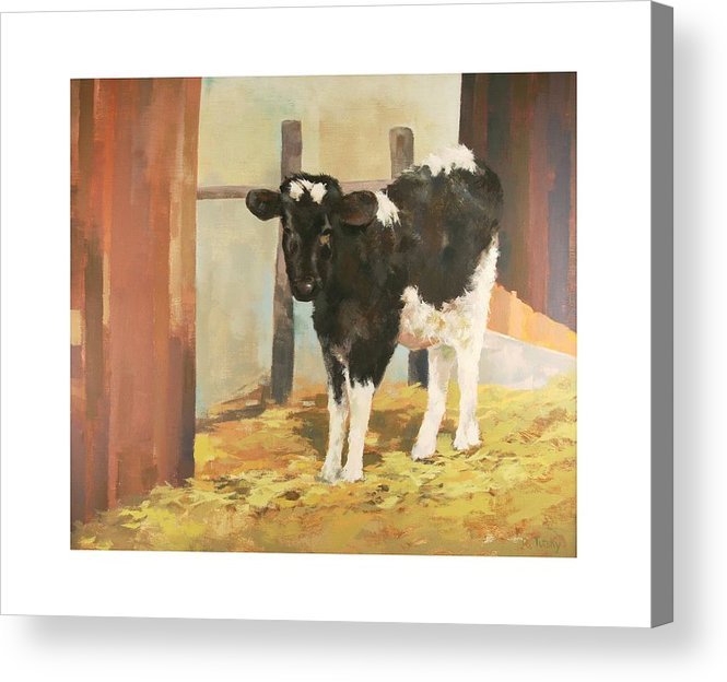 Cow Acrylic Print featuring the painting Holstein Calf by Robert Tutsky