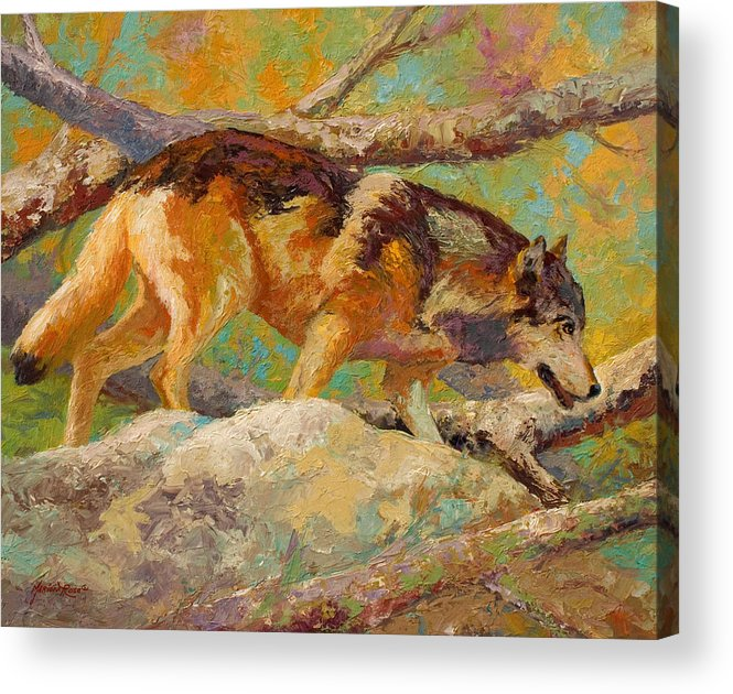 Wolf Acrylic Print featuring the painting Prowler - Grey Wolf by Marion Rose
