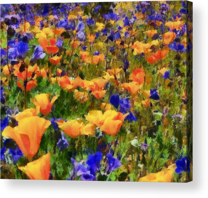 Landscape Acrylic Print featuring the painting Wildflowers by Russ Harris