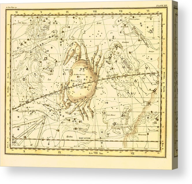 Cancer Zodiac Map Acrylic Print on story map, skagen map, cat map, moon map, earth map, everest map, scorpius map, complete astrology map, astrology chart map, ancient greek astronomy map, zombie map, fire map, monkey map, titanic map, capitals of the world map, astrological sign map, constellation map, world war z map, azimuth map, flags of the world map,