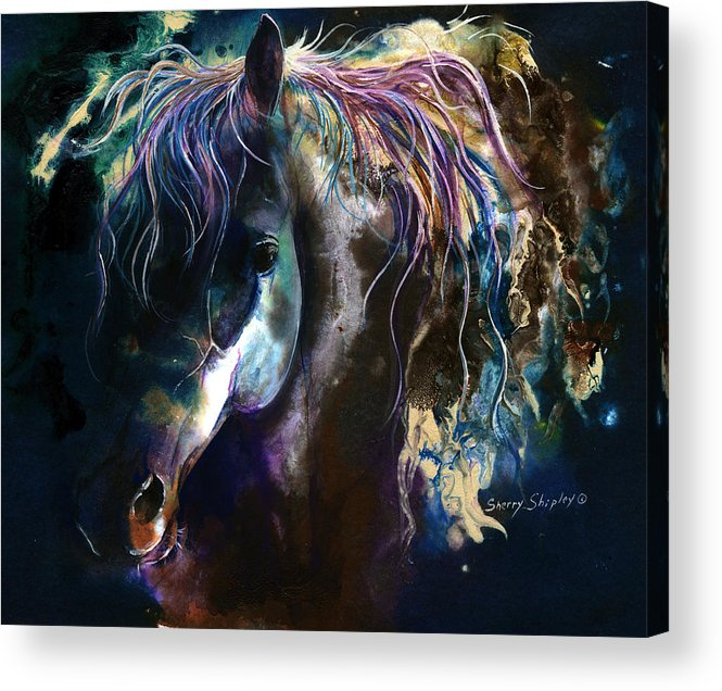 Horse Acrylic Print featuring the painting Night Stallion by Sherry Shipley