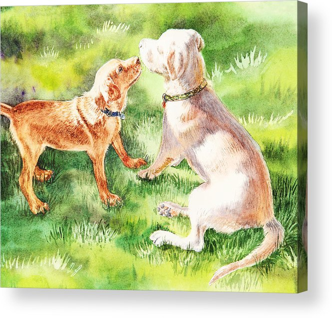 Puppy Acrylic Print featuring the painting Two Brothers Labradors by Irina Sztukowski