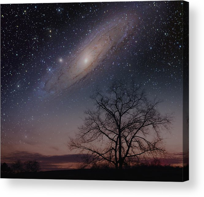 Andromeda Acrylic Print featuring the photograph Close Encounters - Andromeda by Charles Warren