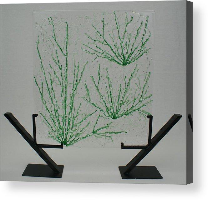 Fused Glass Green pale Green Desert Grass Network standing Art Stand Acrylic Print featuring the glass art Desert Grass by Louis Copper