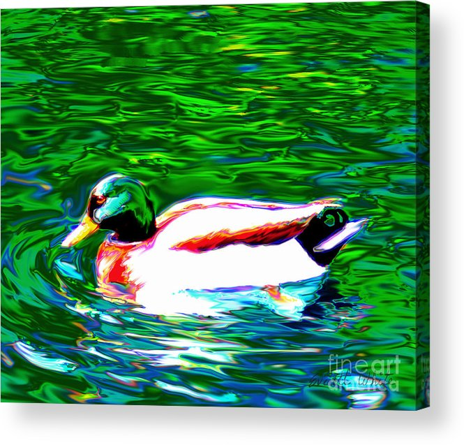 Duck Acrylic Print featuring the painting Duck by Everett White