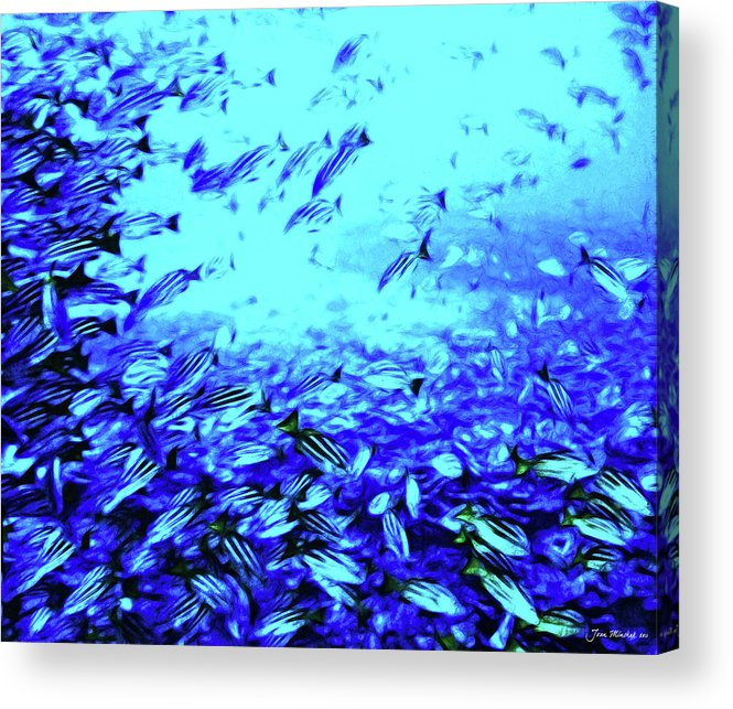 Coral Acrylic Print featuring the digital art Fish Traffic by Joan Minchak