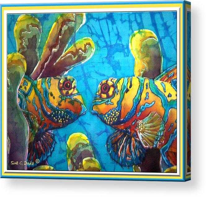 Mandarinfish Acrylic Print featuring the painting Mandarinfish- Bordered by Sue Duda