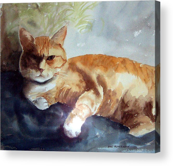 Cat Acrylic Print featuring the print Toby The Best Cat Ever by Anne Trotter Hodge