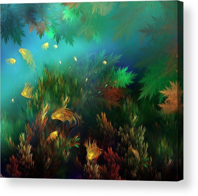 Fish Acrylic Print featuring the photograph Underwater World by Radoslav Nedelchev