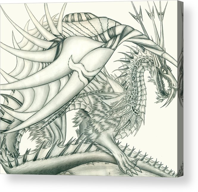 Pencil Work Acrylic Print featuring the drawing Anare'il The Chaos Dragon by Shawn Dall