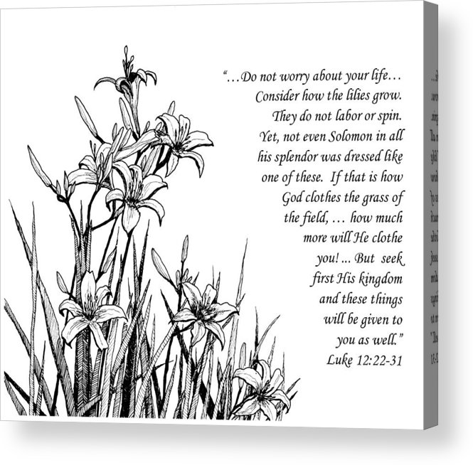 Lilies Acrylic Print featuring the drawing Consider How The Lilies Grow by Janet King