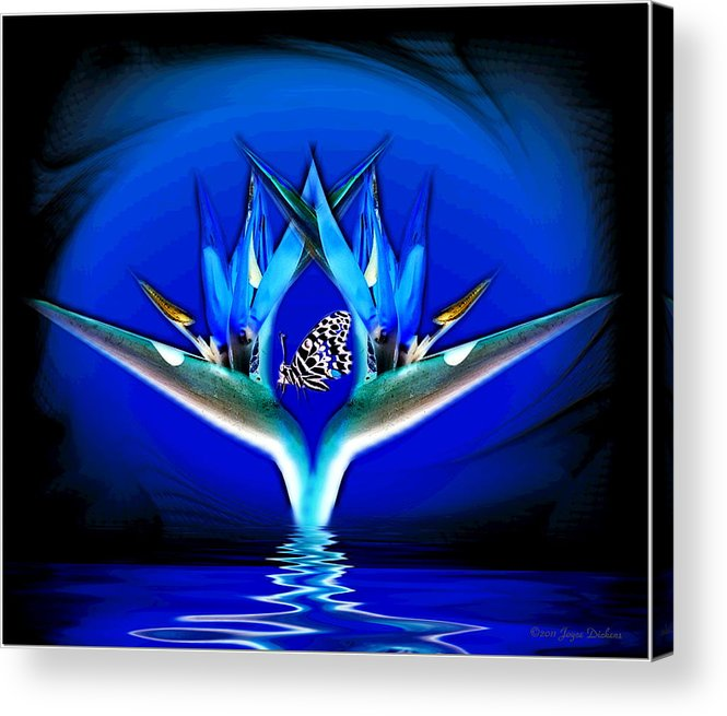 Bird Of Paradise Acrylic Print featuring the digital art Blue Bird Of Paradise by Joyce Dickens