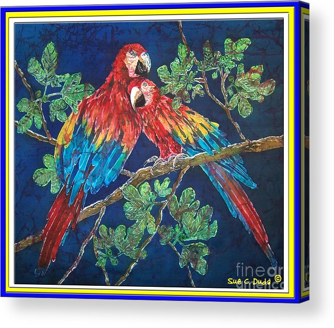 Parrots Acrylic Print featuring the painting Out On A Limb- Macaws Parrots - Bordered by Sue Duda
