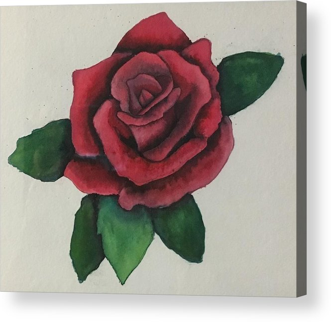 Rose Acrylic Print featuring the painting Watercolor Rose by Renae Shore