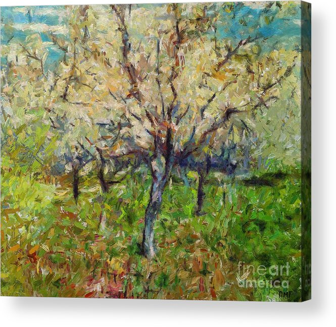 Spring Acrylic Print featuring the painting Almond Orchard by Dragica Micki Fortuna