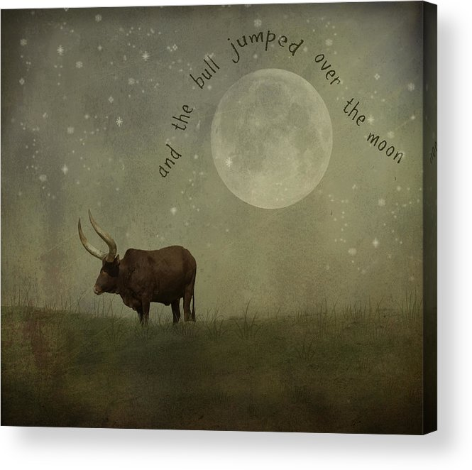 Nursery Rhyme Acrylic Print featuring the photograph Hey Diddle Diddle by Juli Scalzi