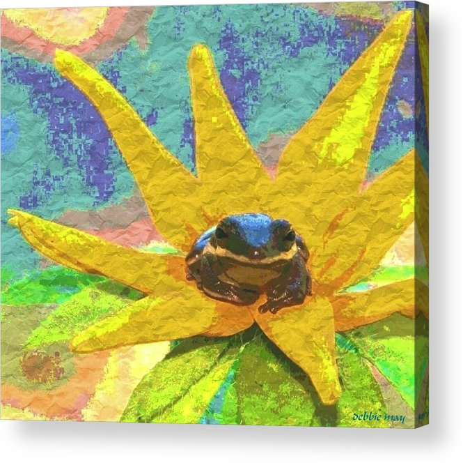 Frog Acrylic Print featuring the photograph Frog A Lilly 3 - Photosbydm by Debbie May