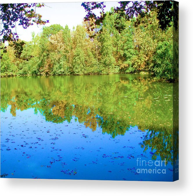 Tree Acrylic Print featuring the photograph Still Waters by Tahlula Arts