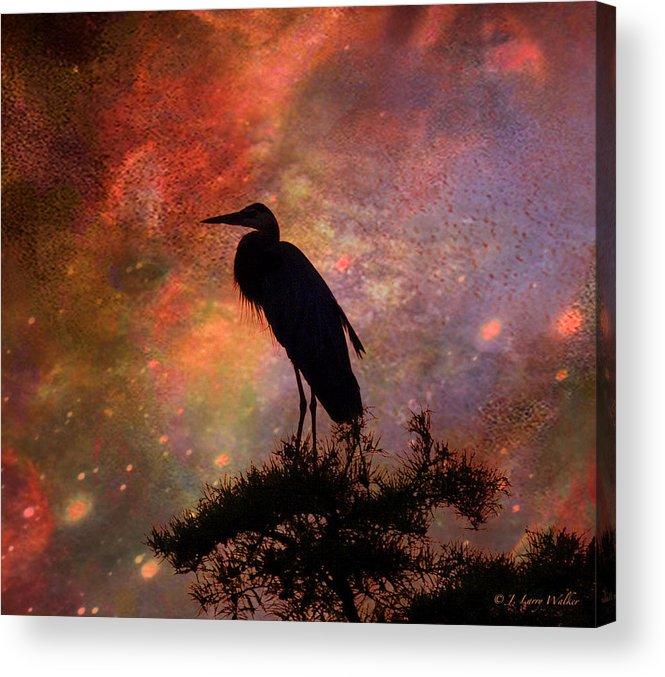 J Larry Walker Acrylic Print featuring the digital art Great Blue Heron Viewing The Cosmos by J Larry Walker