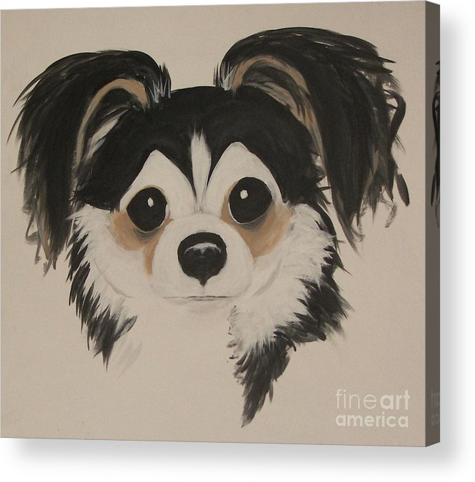 Pets Acrylic Print featuring the painting My Boy Schnapps by Rachel Carmichael