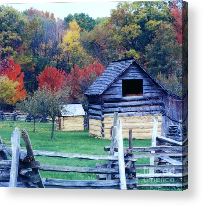 Fall Beauty Photograph Acrylic Print featuring the photograph Beautiful Fall by Penny Neimiller