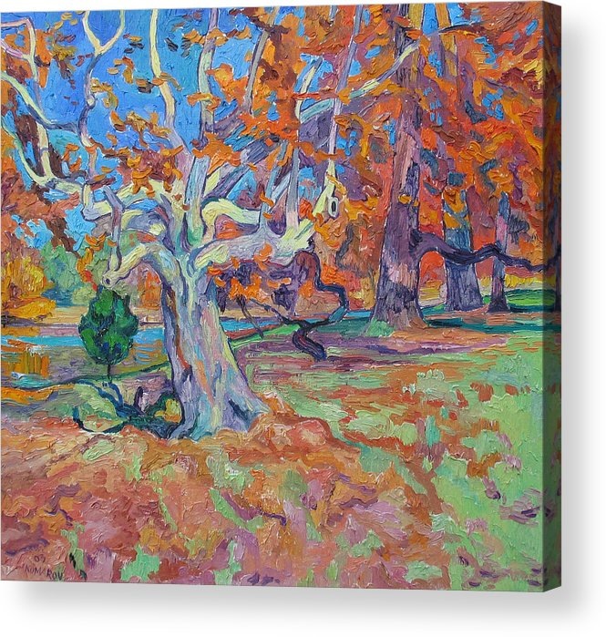 Platan Acrylic Print featuring the painting Platan Tree In Sunny Autumn by Vitali Komarov