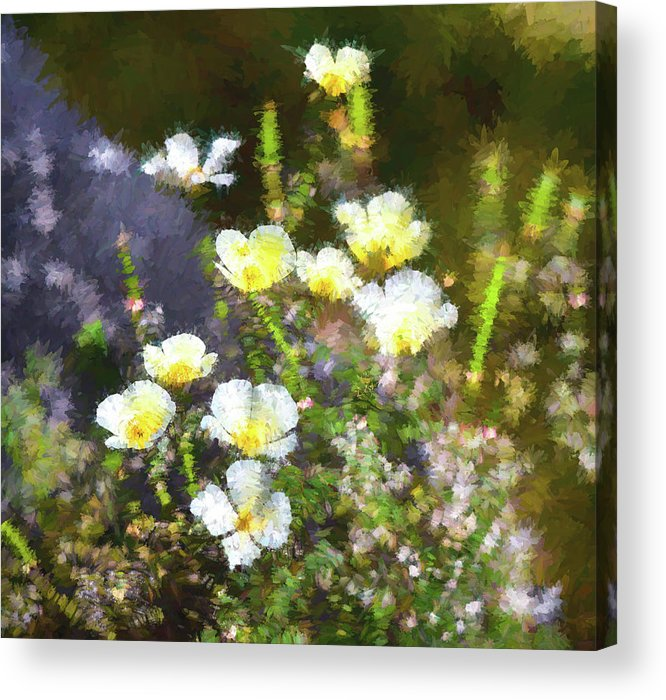 Linda Brody Acrylic Print featuring the digital art White And Yellow Poppies Abstract 2  by Linda Brody