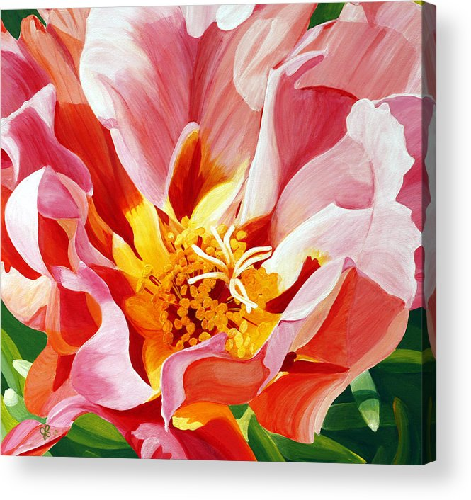Macro Flower Acrylic Print featuring the painting Moss Rose by Julie Pflanzer