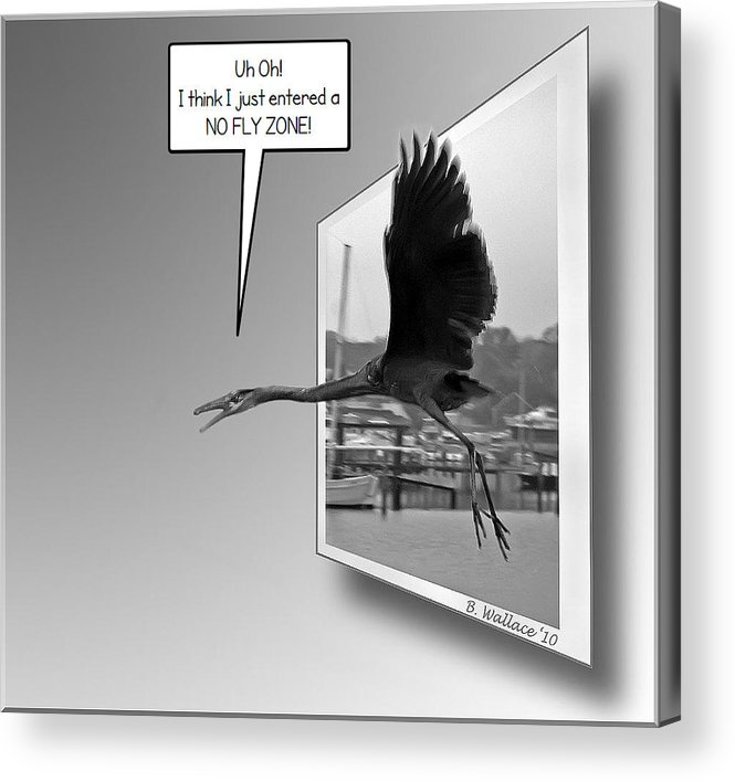 2d Acrylic Print featuring the photograph No Fly Zone by Brian Wallace