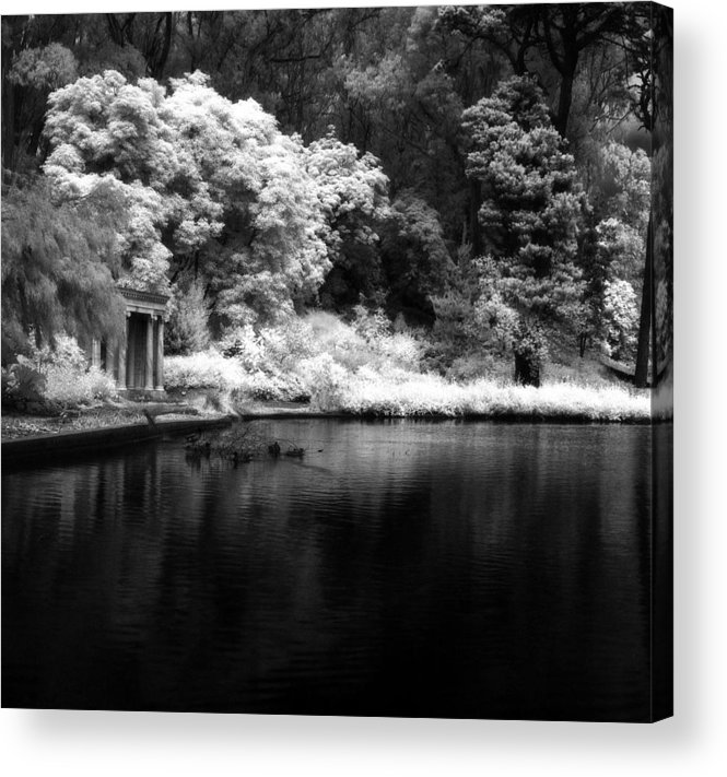 Golden Gate Park Acrylic Print featuring the photograph Portals Of The Past - Golden Gate Park by Rodney Johnson