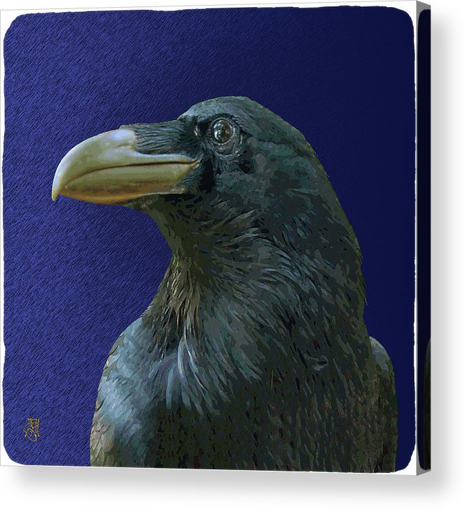 Raven As Loki The Mischief Maker. Acrylic Print featuring the digital art Loki by John Helgeson