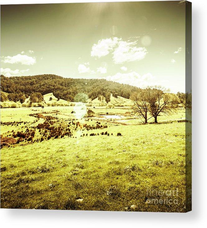 Harmony Acrylic Print featuring the photograph Pastoral Pyengana by Jorgo Photography - Wall Art Gallery