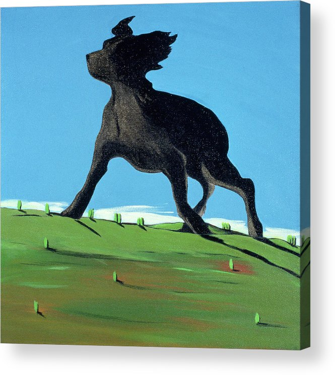 Landscape Acrylic Print featuring the painting Amazing Black Dog, 2000 by Marjorie Weiss