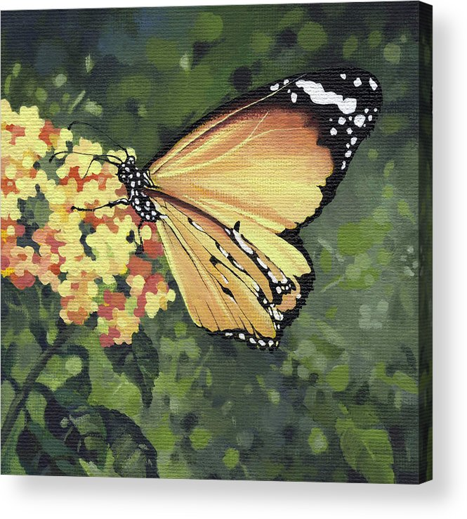 Monarch Acrylic Print featuring the painting Monarch Butterfly by Natasha Denger