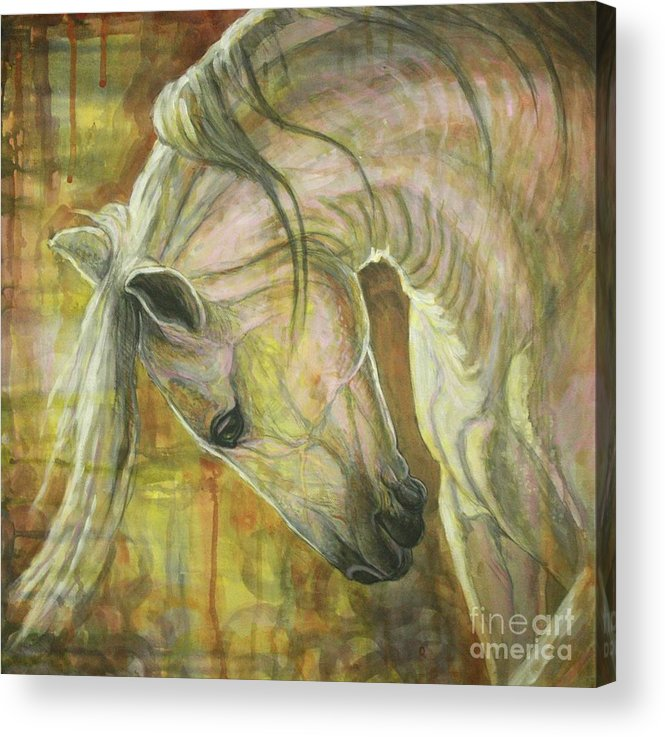 Horse Acrylic Print featuring the painting Reflection by Silvana Gabudean Dobre