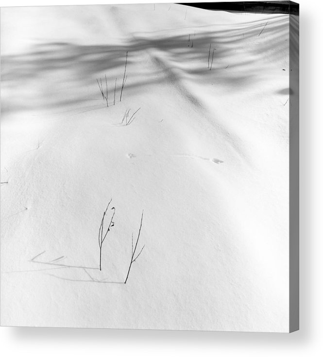 black And White Acrylic Print featuring the photograph Tracks In The Snow by Bernard Barcos