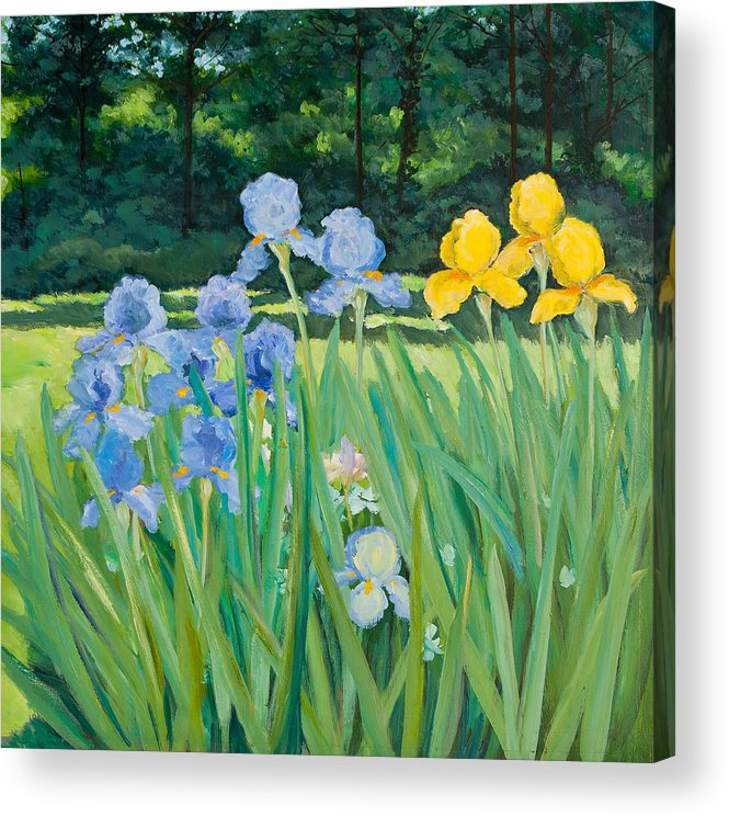 Garden Acrylic Print featuring the painting Irises In The Garden by Betty McGlamery