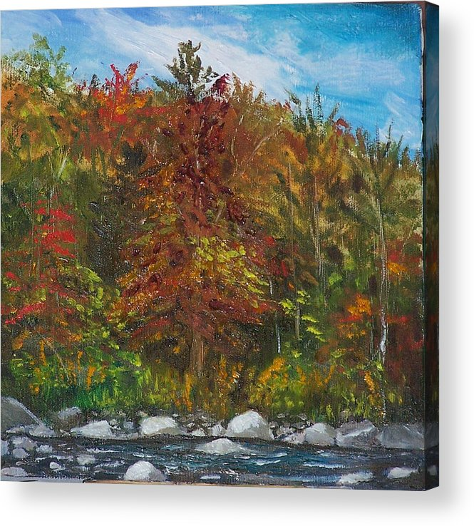 Autumn Acrylic Print featuring the painting Autumn Colors by Pamela Wilson