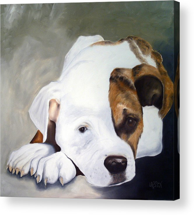 Acrylic Print featuring the painting Bulldog by Dick Larsen